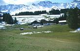 Abwechslungsreiche Landschaft Tegernau Kleines Wiesental
